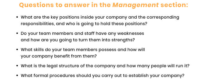 management section questions for tech startup business plan